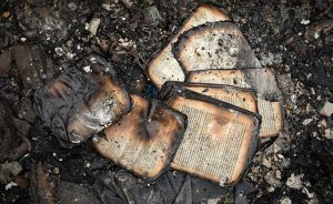 burnt_book_0317