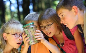 Group of children looking at bug in jar