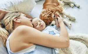 mother napping with her baby and puppy